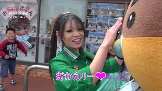 2019/05/29放送・知ったかぶりカイツブリにゅーす