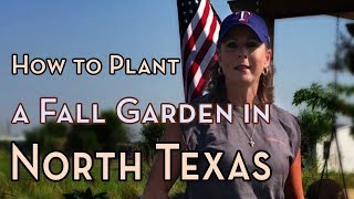 North Texas Gardening ~ How to Plant a Fall Garden in Texas