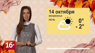 Погода на 14.10.2018