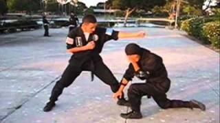 真剣形 Shinken Gata (Forma Real) - Defesa Pessoal (Self Defense)