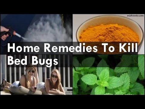 Video Home Remedies To Kill Bed Bugs
