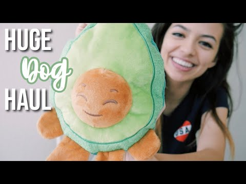 HUGE PUPPY HAUL 🐶 | We're Getting A Puppy!
