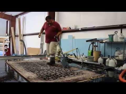 Removing Animal Urine And Saving A Wool Area Rug Sedona Az