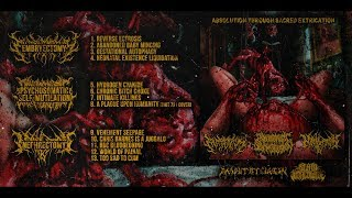 EMBRYECTOMY/PSM/NEPHRECTOMY - ABSOLUTION THROUGH SACRED EXTRICATION [OFFICIAL STREAM] (2018) SW EXCL