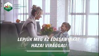 Anyák napjára készülve: a virágüzletek korlátozás nélkül nyitva tarthatnak!