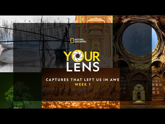 Your Lens: Captures that left us in awe   Week 1