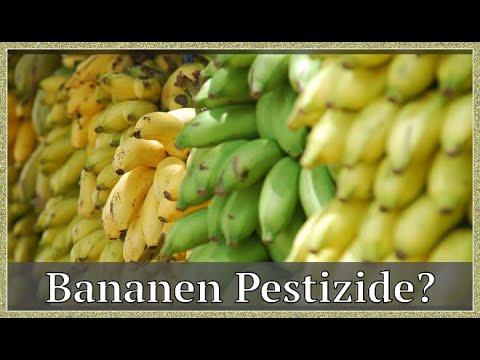 Öko-Test zeigt: Bananen Sind Stark Pestizidbelastet | by Tipps Gute