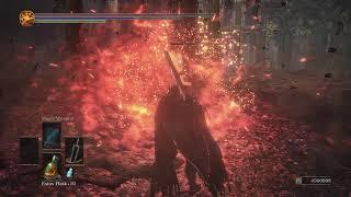 Blood Souls - Berserker Armored Guts vs New NPC