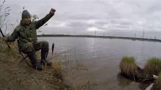 Рыбалка на озёрах Томской области