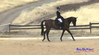 071D Jessica Saksen on Hello Newman Open Novice Dressage Camelot Equestrian Park July 2015