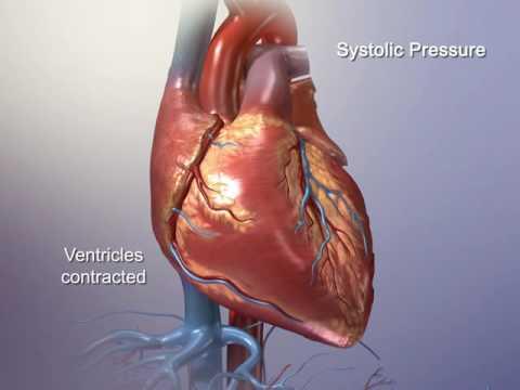 Blutdruck bei Kindern von 11 Jahren Regeltabelle