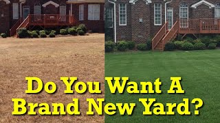 When Should I Kill My Yard And Start Over? Lawn Renovation