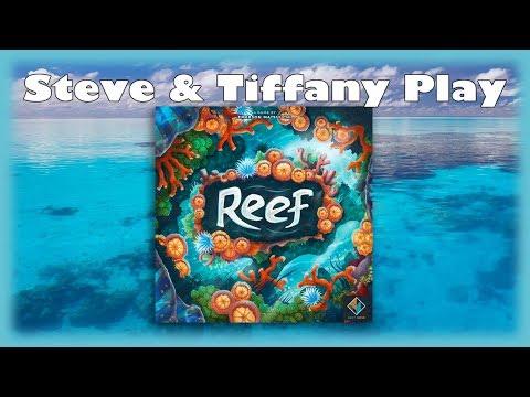 Steve & Tiffany Learn & Play: Reef