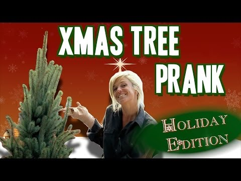 עץ על סטרואידים - מתיחה מצחיקה!