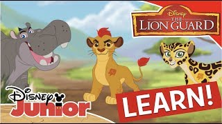 Learning the Animals 🦁  The Lion Guard   Disney Channel Africa