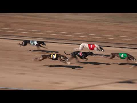 Race 30