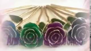 ZJchao Gold Dipped Rose Crafts