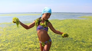 Челлендж/ Ася и водоросли/ Лебедевка/  Challenge /Summer/ Children and algae