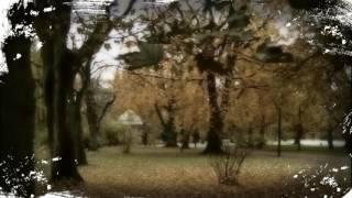 Оркестр Т.Косма - Красивая мечта