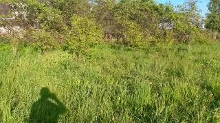 Обзор земли в Дмитровском районе