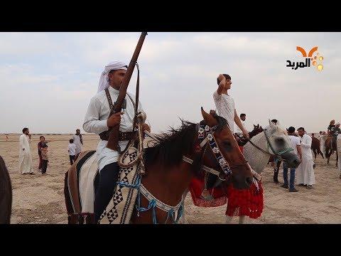 شاهد بالفيديو.. بمشاركة ٣٠ فارسا.. مهرجان للخيول العربية في المثنى #المربد