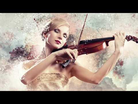 Stella Violinista video preview