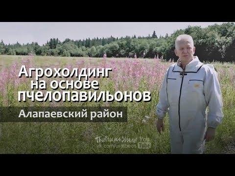 Пасека на основе пчело павильонов Свердловская область Агрохолдинг Алапаевский район