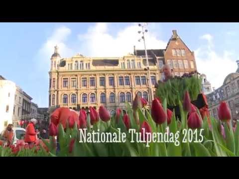 Video Nationale Tulpendag 2015
