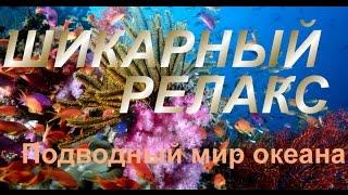Очень красивая Релакс музыка  + Красота подводного мира
