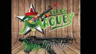 Banda Maguey-Puros Corridos