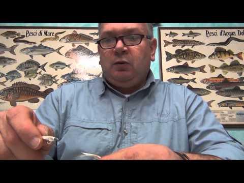 Negozio che pesca in pesce con noi