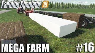 MEGA FARM Challenge | Timelapse #16 | Farming Simulator 19