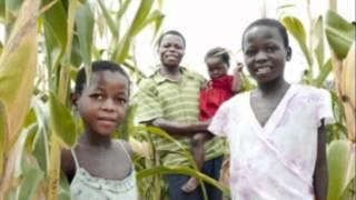 Kutambura by Biggie Tembo and the Bhundu Boys