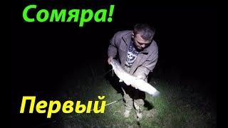 Рыбалка на сома в мае