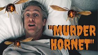 Murder Hornets... Wait, What? (Original Song)