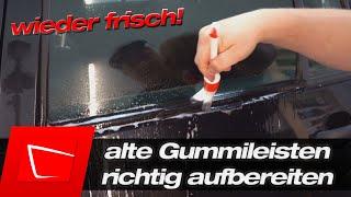 20 Jahre alte Gummileisten aufbereiten - Dichtlippe richtig reinigen und pflegen - Wie NEU!