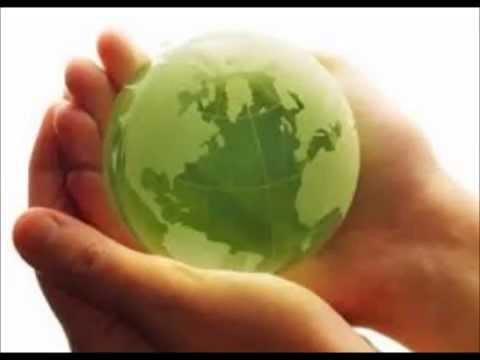 Загрязнение окружающей среды. ОБЖ 8 класс.