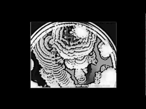 Vesciculite eiaculazione precoce
