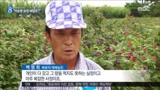 2016년 06월 29일 방송 전체 영상