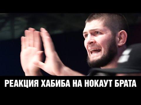 Как Хабиб Нурмагомедов смотрел бой Завуров – Аббасов