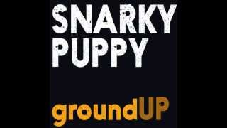 Snarky Puppy - Thing of Gold (Remix)