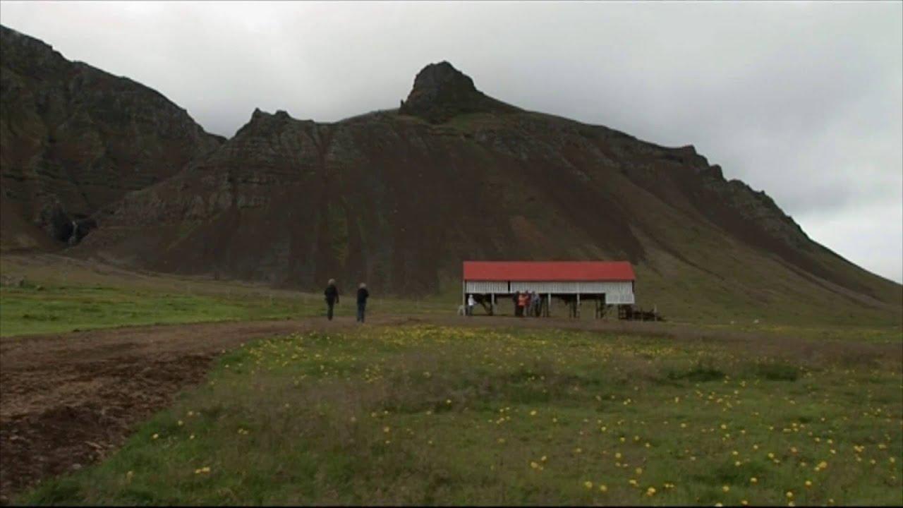 Island: Haifleisch (0:41)