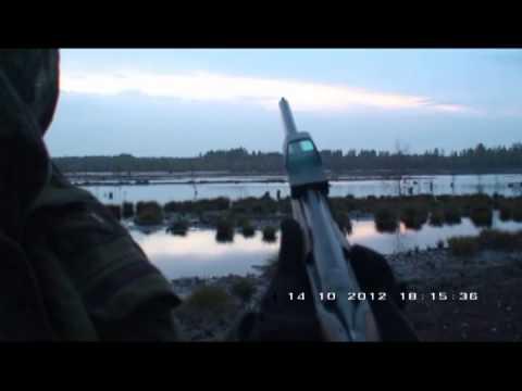 Medniekiem.lv TV: Redring tēmekļa putnu medībām apskats