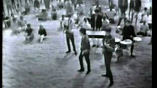 The Animals - It's My Life (clip, 1965) ♫♥50 YEARS & counting