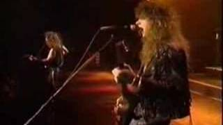 Winger Madalaine Live In Tokyo 91 Video