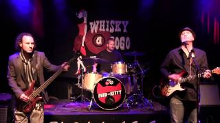 Whisky One Shot -  Feed The Kitty