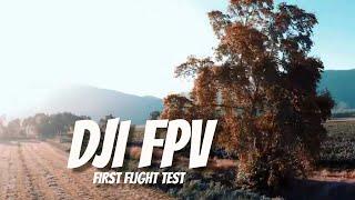 DJI FPV First Flight