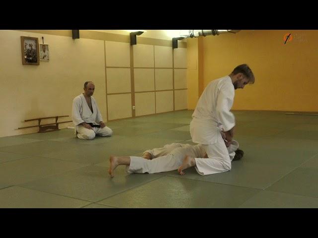 Aikido 2. Kyu Prüfung (Julian)