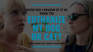 How Do I Know if it is Time to Euthanize my Dog or Cat?: Vlog 102
