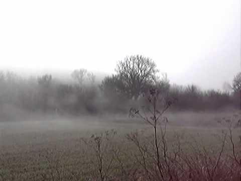Niebla cerca de Hontangas